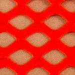 lucid orange